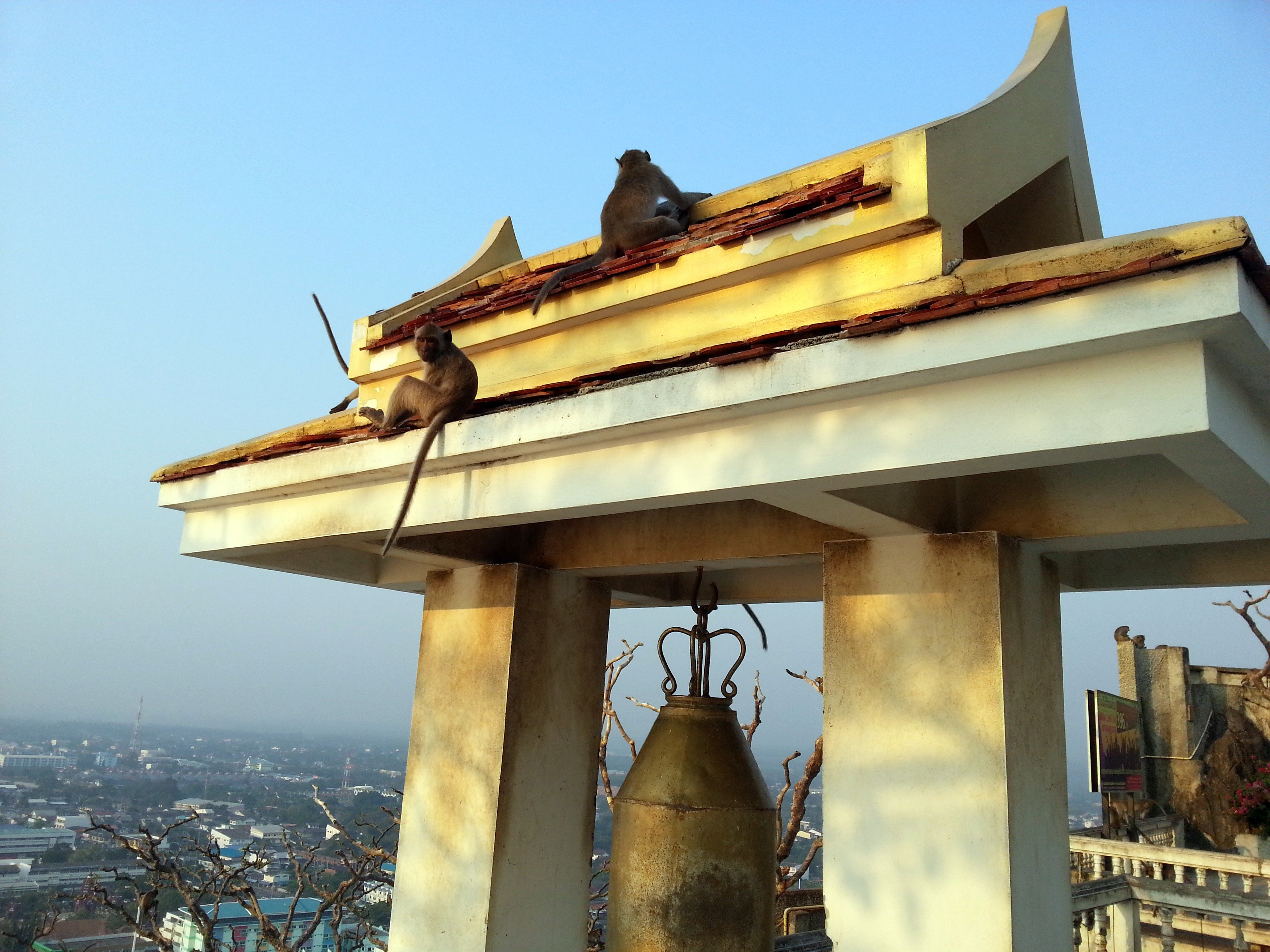Monkey Temple in Prachuap Khiri Khan