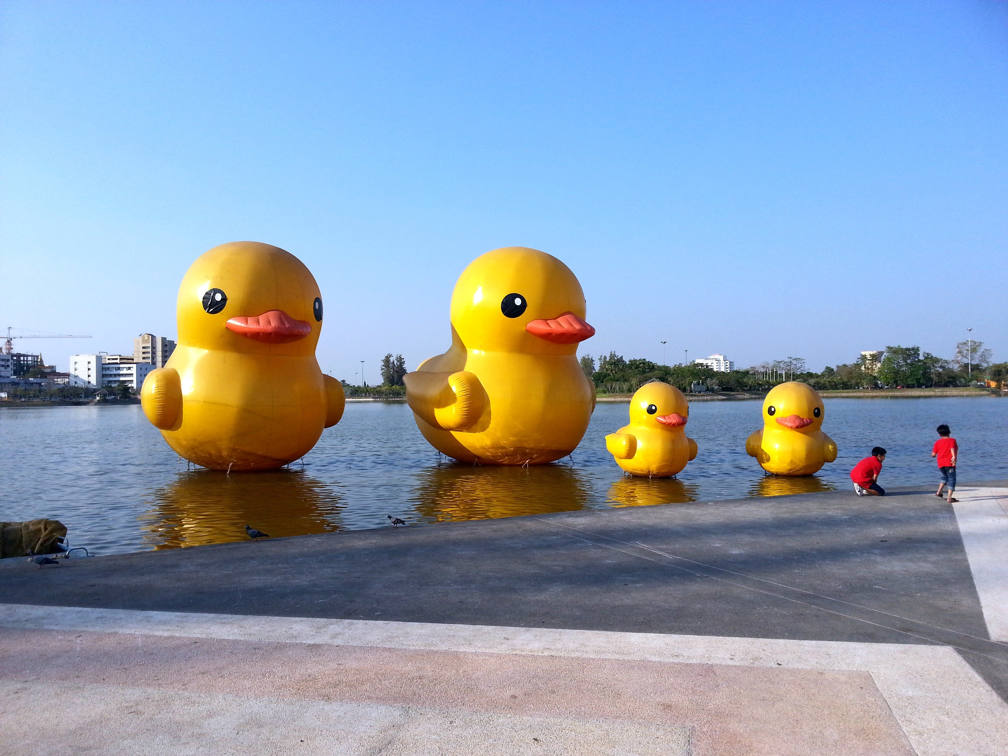 Yellow inflatable ducks in Nong Prajak Park