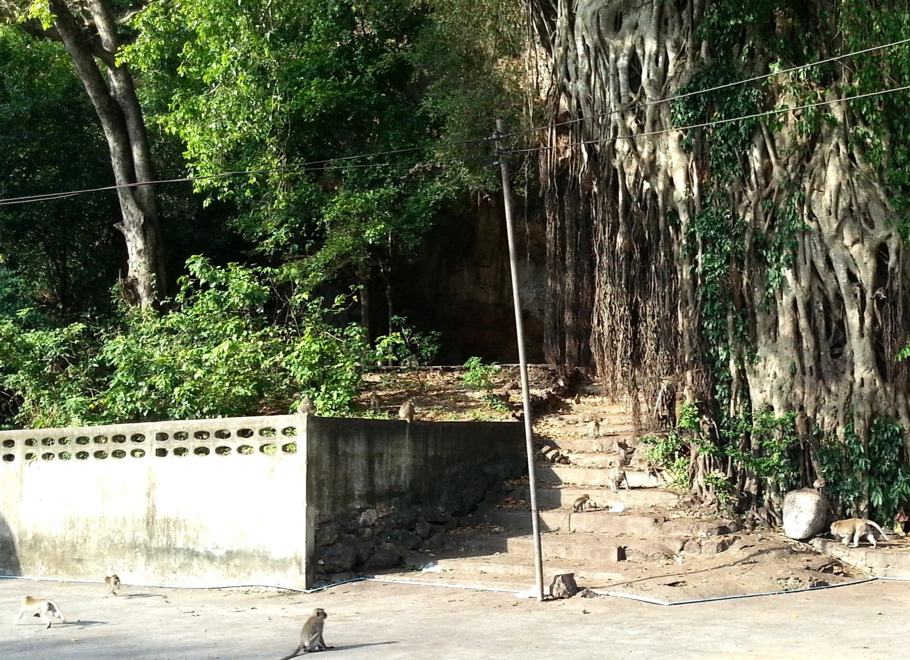 Entrance to Nang Khlot Cave