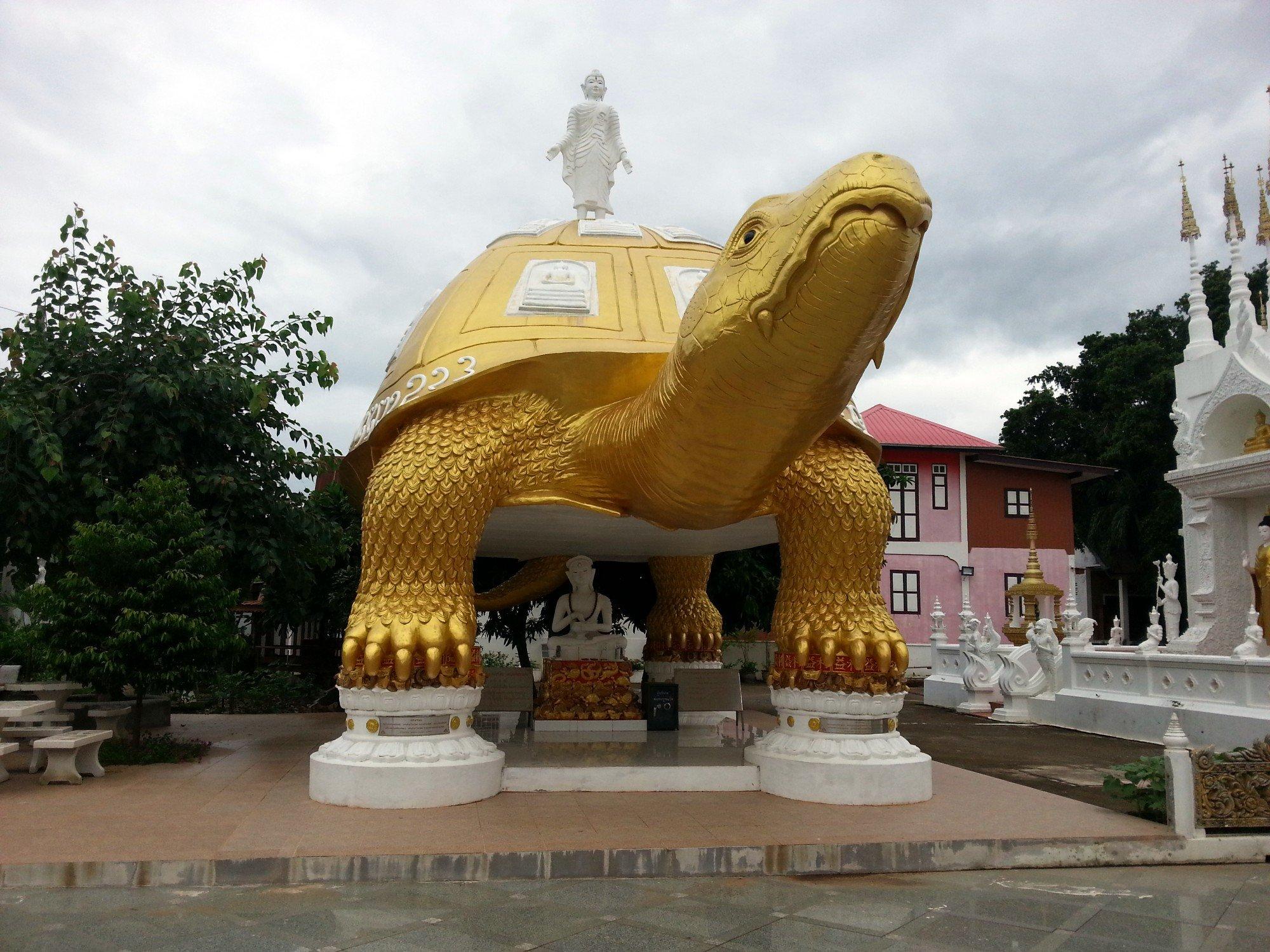 Turtle statue at Wat Phong Sunan