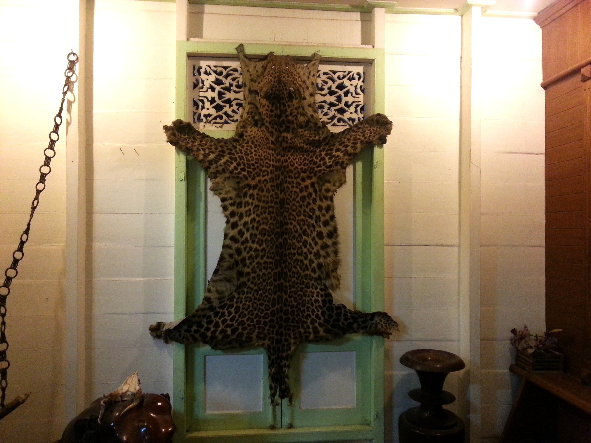 Leopard skin at the Vongburi House Museum