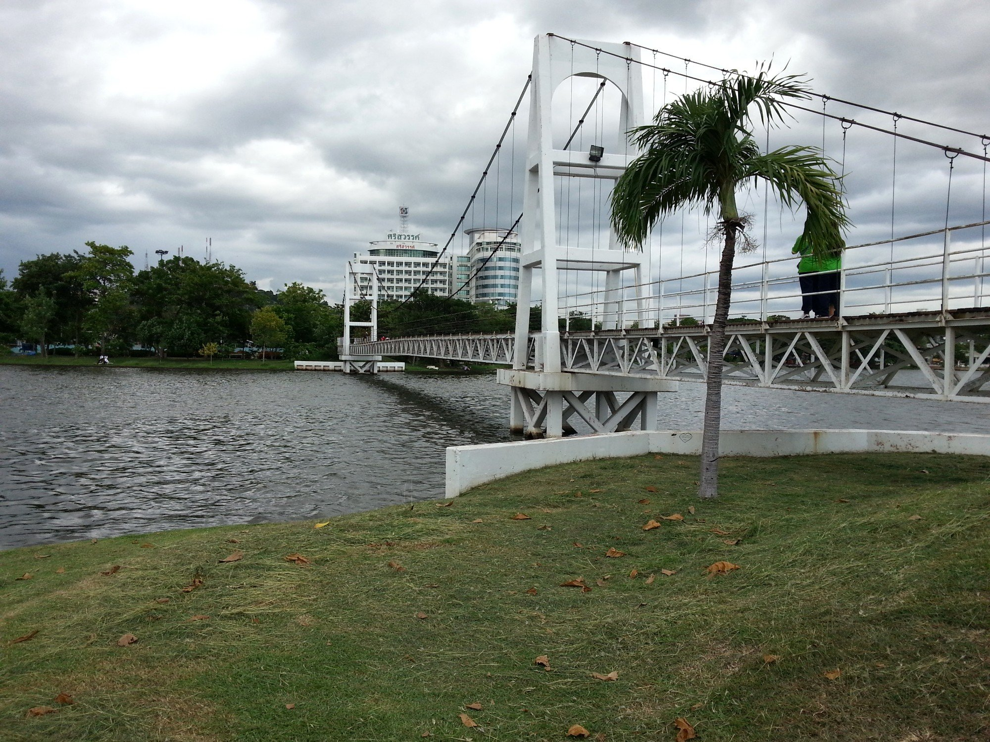 Bridge to the island in Paradise Park